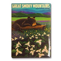 Great Smoky Wildflower Heaven Metal Magnet