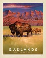 "Badlands NP Living the Good Life 8"" x 10"" Print"