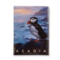 Acadia Puffin Metal Magnet