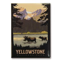 Yellowstone Moose Lake Magnet