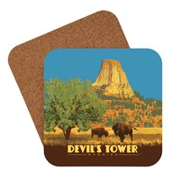 Devil's Tower, WY Coaster