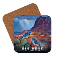 Big Bend Desert Perch Coaster