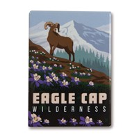 Eagle Cap Wilderness Magnet