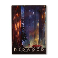 Redwood Among the Giants Magnet