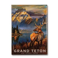 Grand Teton Morning Mist Magnet