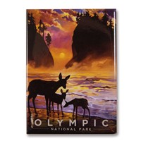 Olympic Magical Moment Magnet