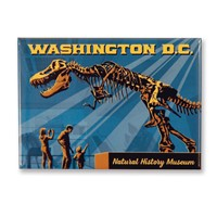 Washington, DC Museum of Natural History Magnet