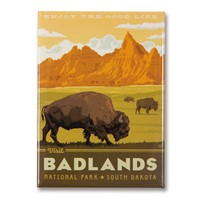 Badlands Enjoy Magnet