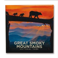 Great Smoky Bear Crossing Square Magnet