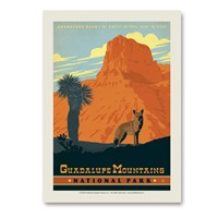 Guadalupe Mountains Vert Sticker
