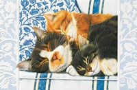 Sleepy Kitties (Single)