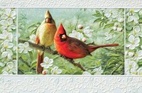 Cardinals in Orchard (WD) (Single)