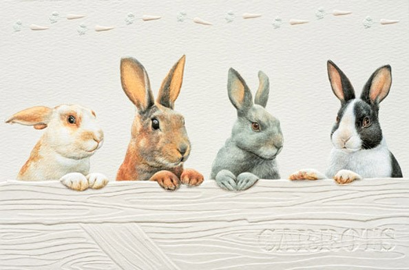 Rabbit Row Embossed Bunny Greeting Cards